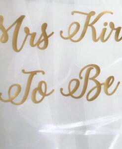 mrs to be hen do veil
