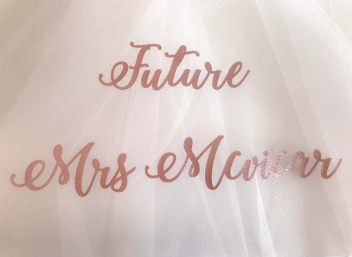 future mrs veil for hen do party