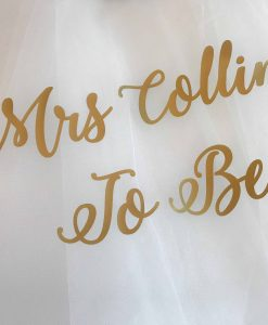 mrs to be hen do veil with text